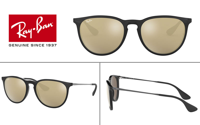 Ray-Ban RB4171 Erika Sunglasses