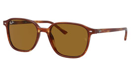 Ray-Ban RB2193 Leonard Sunglasses
