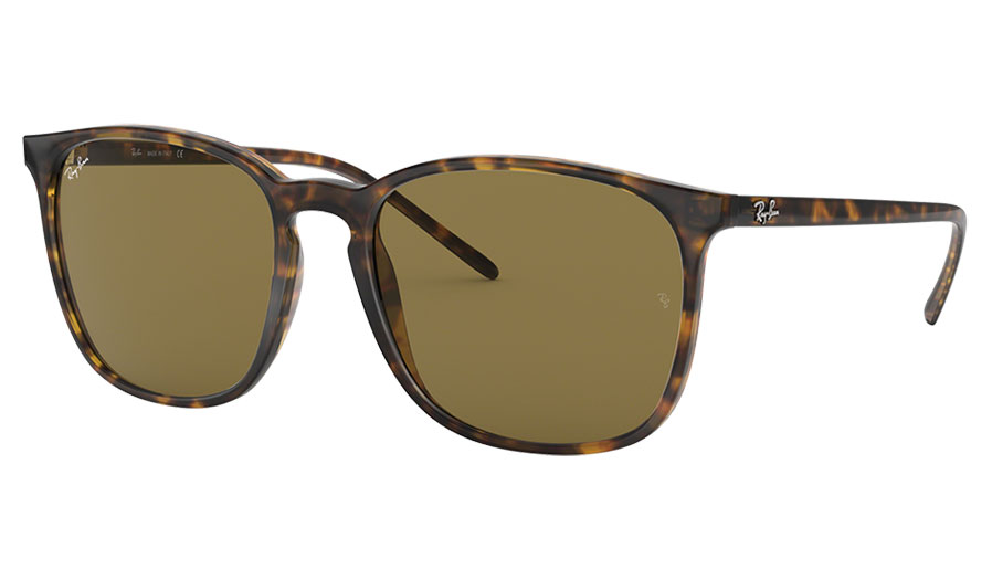 Ray-Ban RB4387 Sunglasses - Havana / Brown