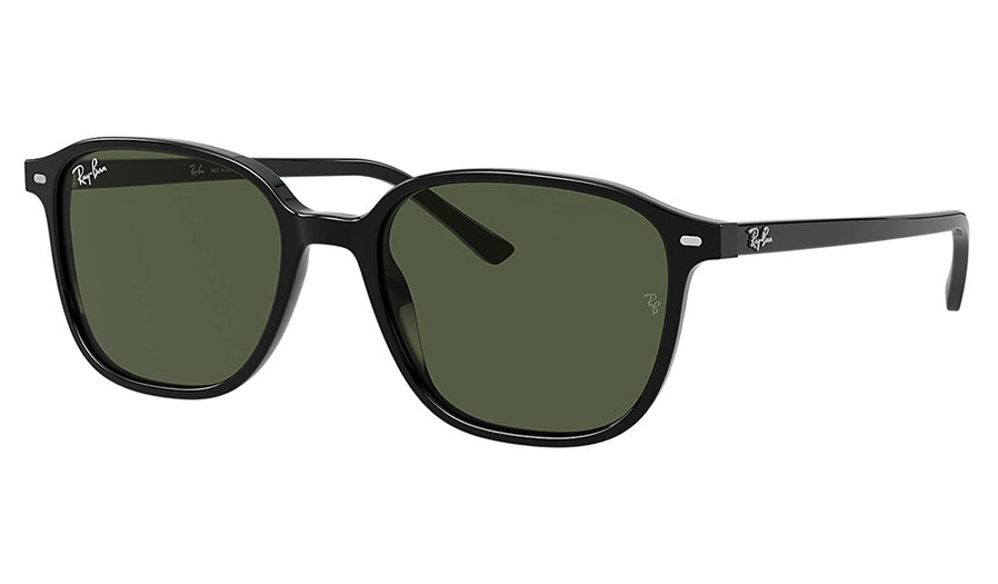 Ray-Ban RB2193 Leonard Sunglasses - Black / Green