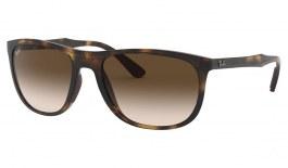 Ray-Ban RB4291 Sunglasses - Tortoise / Brown Gradient