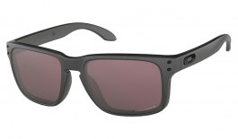 Oakley Holbrook Sunglasses - Steel Collection - Steel / Prizm Daily Polarised