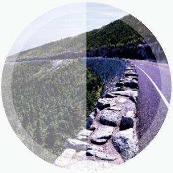 Bolle Phantom Lenses - High Contrast