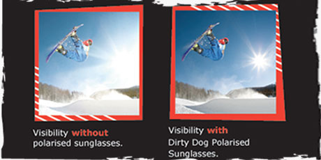 Dirty Dog Sunglasses - Polarised Tech