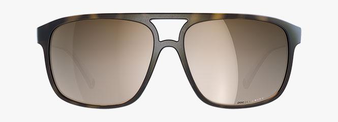 POC Will Sunglasses