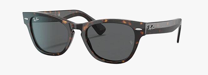 Ray-Ban RB2201 Laramie Sunglasses