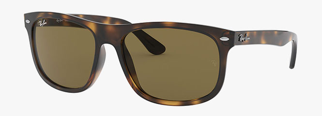 Ray-Ban RB4226 Sunglasses