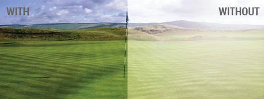 Nike MAX - Golf Comparison