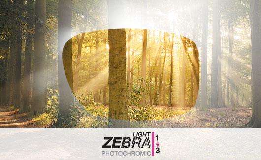 Julbo Lenses - Zebra Light