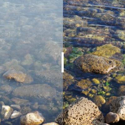 Oakley Lenses - HD Polarised Lenses