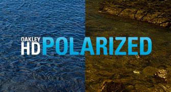 HD Polarised