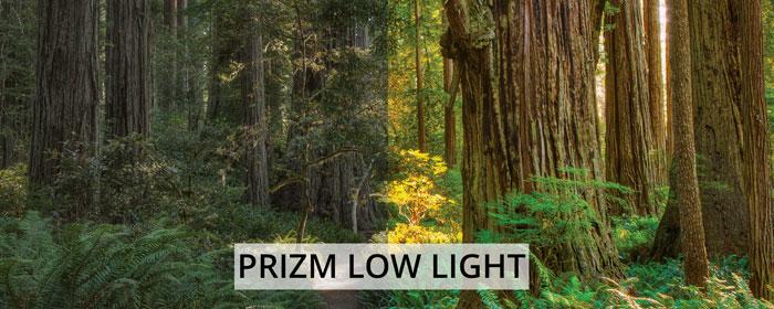 Prizm Low Light