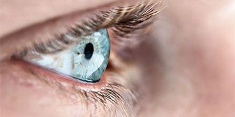Smith Sunglasses - Lens Technology - TLT Optics