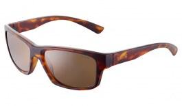 Bolle Holman Sunglasses - Matte Tortoise / Brown HD Polarised