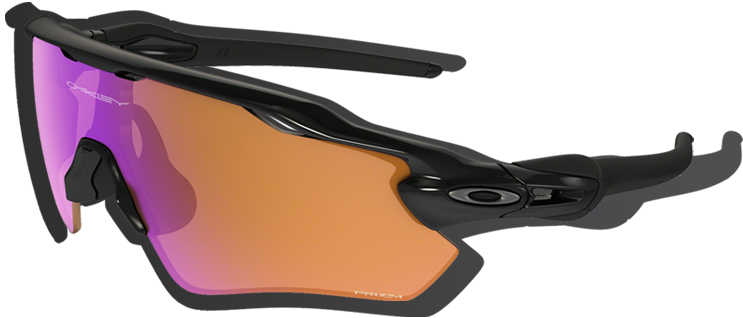 Shield Sunglasses