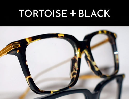 tortoiseandblack